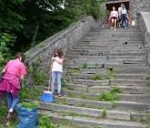 Sprzątanie i początek odbudowy - VII 2013